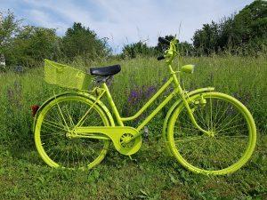 Grünes Fahrrad steht im Grünen.