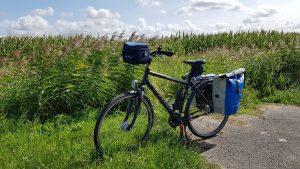 Radtour entlang des Weser-Radwegs 4